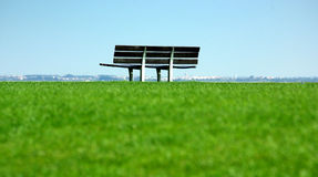 Grass field with bank Stock Image