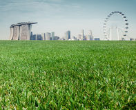 Grass field  in beautiful view  city background design Stock Photography