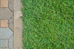 Grass field and blick floor Royalty Free Stock Photos