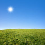 Grass Field and Blue Sky. Photo of a green grass field with deep blue sky on a sunny day stock image