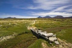 Grass field and bridge over river near volcano Sajama , Bolivia Stock Photos