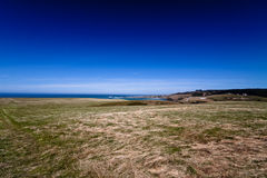 Grass field with bright blue sky - New Zealand Stock Image