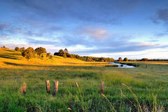 Grass field of Capalaba at golden sunset hour under colorful cloud sky Royalty Free Stock Image