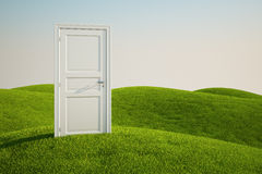 Grass field with a door. 3D rendering of a grass field with a door Royalty Free Stock Photos