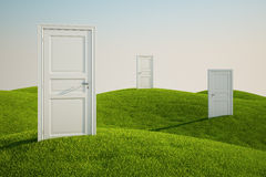 Grass field with doors. 3D rendering of a grass field with three doors Stock Photos