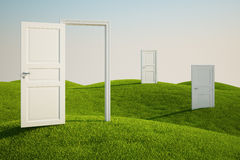 Grass field with doors. 3D rendering of a grass field with three doors Stock Image
