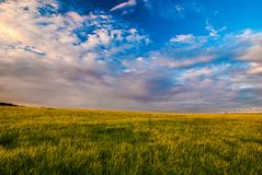 Grass field and dramatic sky at sunset Stock Images