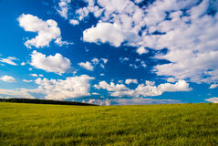 Grass field and dramatic sky at sunset Royalty Free Stock Photos