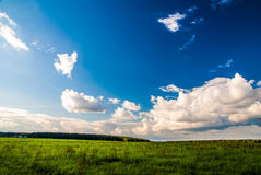 Grass field and dramatic sky at sunset Stock Photo