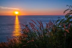 Grass Field in front of the sunset at Leam PromThep Cape in Phuket Stock Photo
