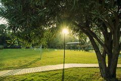 Grass Field, Greenery field with soccer playground at a resort.  Stock Photo