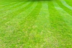 Grass field lines Stock Photos