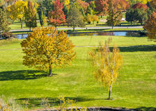 Grass field in a park with fall colors Royalty Free Stock Photo