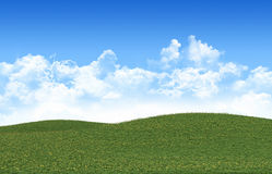 Grass field  and perfect sky Stock Images