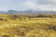 Grass field at the Snaefellsnes peninsula. Royalty Free Stock Photos