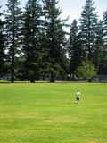 Grass Field, Soccer Player. Grass field with a soccer player and pine tree background royalty free stock images