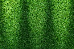 Grass field texture for golf course, soccer field or sports background concept design. stock photo