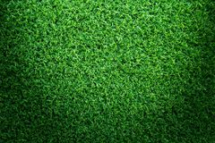 Grass field texture for golf course, soccer field or sports background concept design. Artificial grass stock images