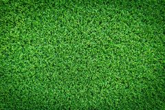 Grass field texture for golf course, soccer field or sports background concept design. Stock Photography