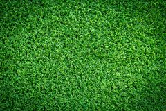Grass field texture for golf course, soccer field or sports background concept design. Artificial grass stock photography