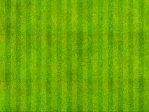 Grass Field Top View. Green grass background from a sports arena top view Stock Image