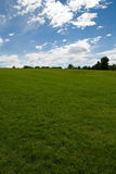 Grass field and trees. Vertical color low angle image of freshly mowed green grass field with trees in distance and blue sky with clouds Royalty Free Stock Images