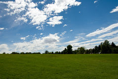 Grass field and trees. Horizontal color low angle image of freshly mowed green grass field with trees in distance and blue sky with clouds Stock Images