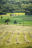 Grass fields with church Royalty Free Stock Photography
