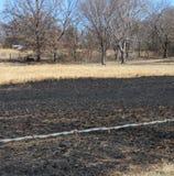 Grass fire, burned grassland or pasture stock image