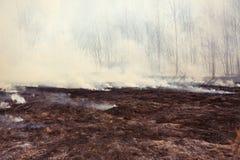 Grass Fire. With Smoke, horizontal Stock Photo
