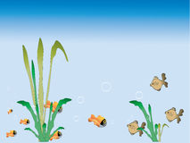 Grass and fish. In the water Royalty Free Stock Photos