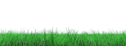 Grass flooring on white Royalty Free Stock Photo