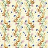 Grass, flower bouquet, watercolor, pattern seamless Stock Image