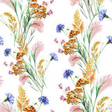 Grass,  flower, bouquet, watercolor, pattern seamless Royalty Free Stock Photo