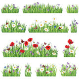 Grass and flower icon set. Grass background set. Summer flower border collection Royalty Free Stock Photo