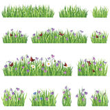 Grass and flower icon set. Grass border background set. Summer flower frame collection Stock Photography
