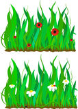 Grass and flower pattern set Stock Photo