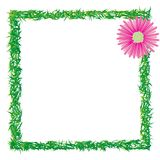 Grass and flower photo frame Royalty Free Stock Images