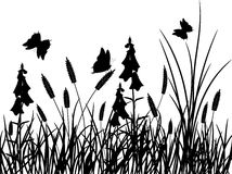 Grass and flower, vector royalty free stock photo