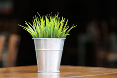Grass in flowerpot on the table Stock Photo