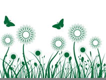 Grass and Flowers. A Green Backgound that includes grass, flowers, seeds, and butterflies Stock Photo