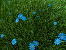 Grass and flowers. 3d rendered illustration of a grass field with blue flowers Royalty Free Stock Images