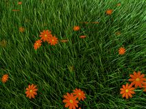 Grass and flowers. 3d rendered illustration of a grass field with orange flowers Stock Images