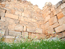 Grass flowers and ancient wall at Pamukkale, Turkey Stock Image