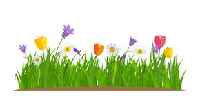 Grass and flowers border, greeting card decoration element White Background. Vector Illustration Stock Photo