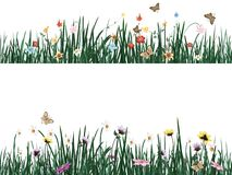 Grass with flowers and butterflies. Vector illustration. EPS 10 Stock Illustration