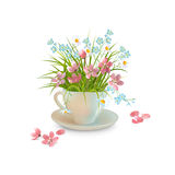 Grass and Flowers in the Cup Stock Image