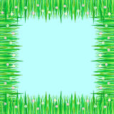 Grass and flowers frame. A frame made of grass and flowers on the blue background Royalty Free Stock Images