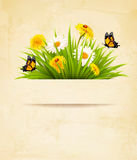 Grass with flowers on old paper background. Stock Photography