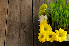Grass and flowers over wood Stock Photos